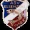 ASV Elsenztal Steinsfurt 1968 e.V.